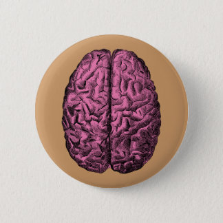 Human Anatomy Brain Pinback Button