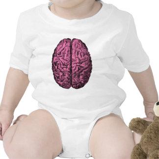 Human Anatomy Brain Creeper