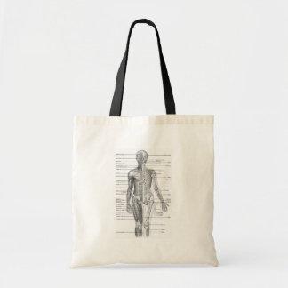 Human Anatomy Chart Tote Bag