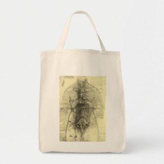 Human Anatomy, Female Torso by Leonardo da Vinci Grocery Tote Bag