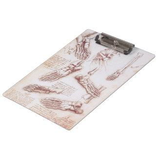 Human Anatomy Foot Skeleton Bones by da Vinci Clipboard