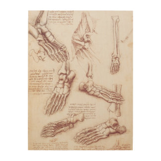 Human Anatomy Foot Skeleton Bones by da Vinci Wood Prints