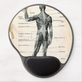 Human Anatomy Illustrations Gel Mouse Pad