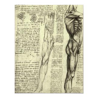 Human Anatomy Male Muscles by Leonardo da Vinci Card