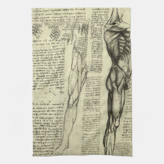 Human Anatomy Male Muscles by Leonardo da Vinci Towel