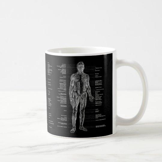 Human Anatomy Muscles Front, Back & Side Black Coffee Mug