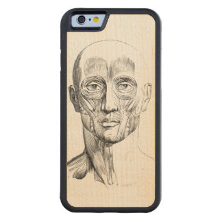 Human Anatomy | Muscles of the Face (ca. 1852) Carved Maple iPhone 6 Bumper Case