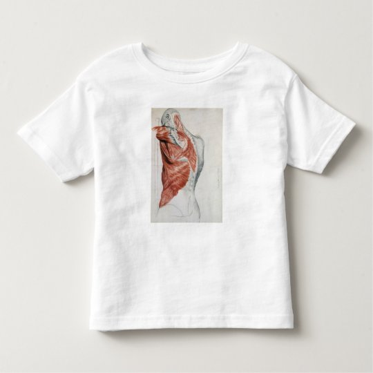 Human Anatomy; Muscles of the Torso and Shoulder Toddler T-shirt