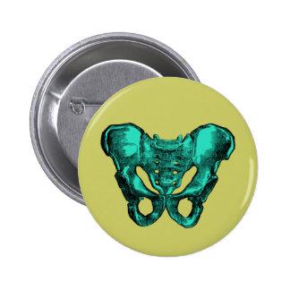 Human Anatomy Pelvis Bones Pinback Button