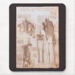 Human Anatomy Skeletons by Leondardo da Vinci Mousepads