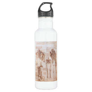 Human Anatomy Skeletons by Leondardo da Vinci 24oz Water Bottle
