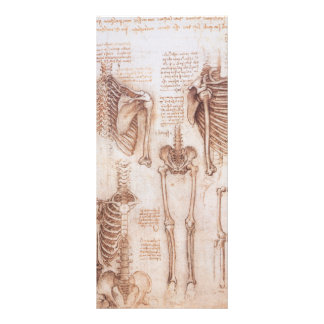 Human Anatomy Skeletons by Leondardo da Vinci Rack Card Design