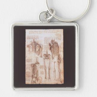 Human Anatomy Skeletons by Leondardo da Vinci Silver-Colored Square Keychain