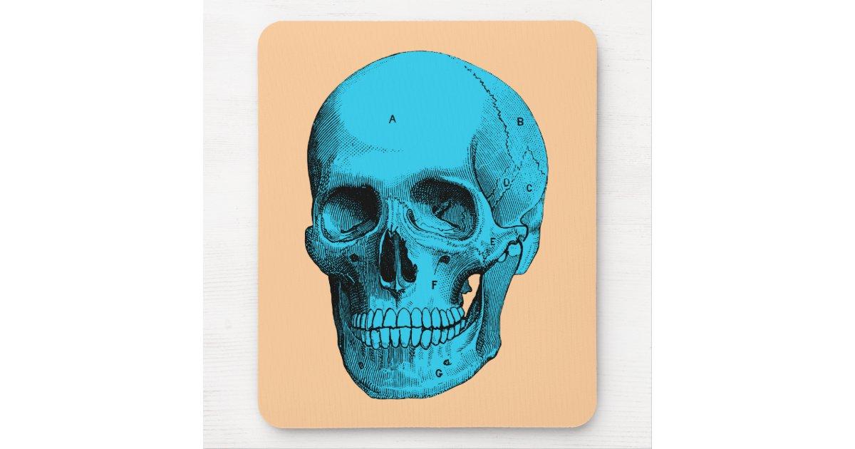 Human Anatomy Skull Mouse Pad Zazzle