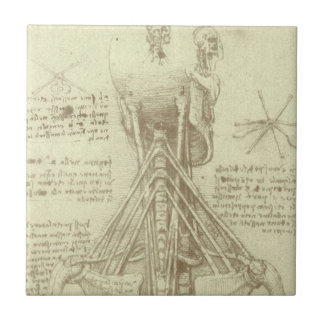 Human Anatomy Spinal Column by Leonardo da Vinci Ceramic Tile
