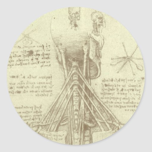 Human Anatomy Spinal Column by Leonardo da Vinci Round Sticker