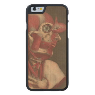 Human Anatomy Vintage Eye Head and Neck Carved Maple iPhone 6 Case