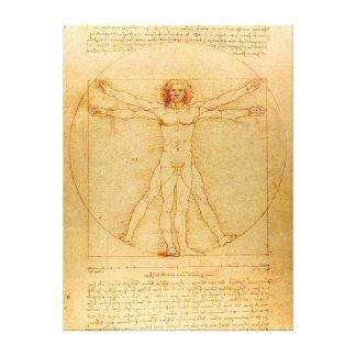 Human Anatomy, Vitruvian Man by Leonardo da Vinci Canvas Prints