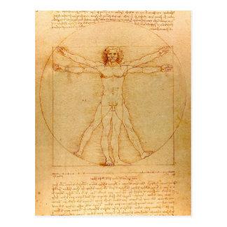 Human Anatomy Vitruvian Man by Leonardo da Vinci Post Card