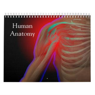 Human Anatomy Calendar