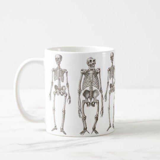 Human and Ape Skeletons Primate Missing Link Mug