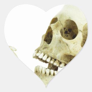 Human and monkey skull opposite of each other heart sticker