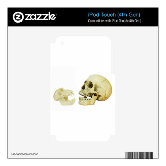Human and monkey skull opposite of each other iPod touch 4G skins