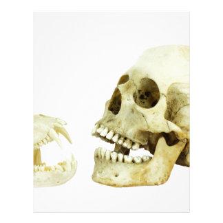 Human and monkey skull opposite of each other letterhead