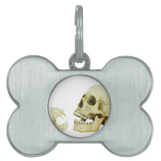Human and monkey skull opposite of each other pet ID tag