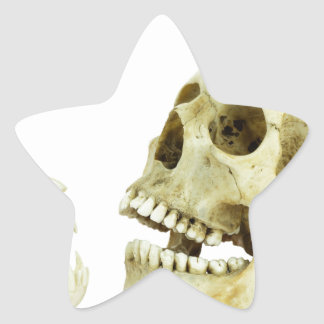 Human and monkey skull opposite of each other star sticker