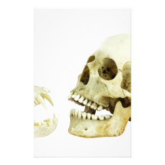 Human and monkey skull opposite of each other stationery