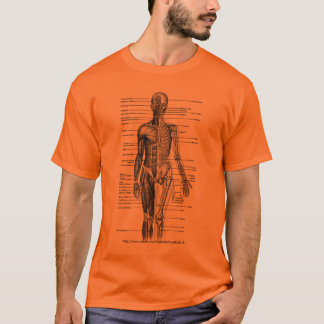 Human body Medical Diagram Tee- 4 students T-Shirt