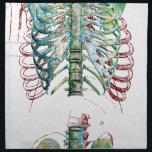 "Human Body Rib Cage Napkin<br><div class=""desc"">Human Body Rib Cage Skeleton Bones</div>"