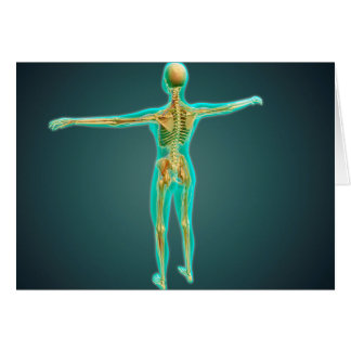 Human Body Showing Skeletal System, Arteries 2 Greeting Card