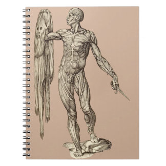 Human Body Skinned anatomy (Valverde) Notebook