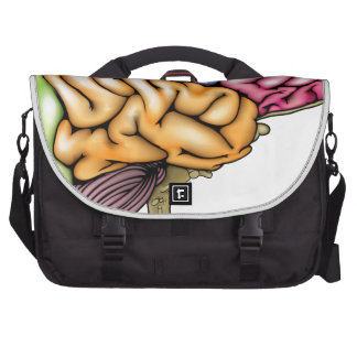 Human brain anatomy sectioned laptop computer bag
