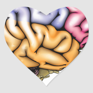 Human brain anatomy sectioned heart sticker