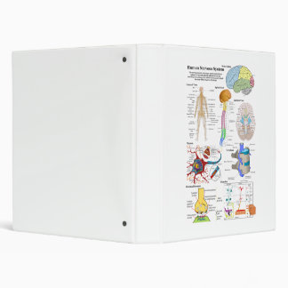 Human Brain and Central Nervous System Diagram 3 Ring Binder