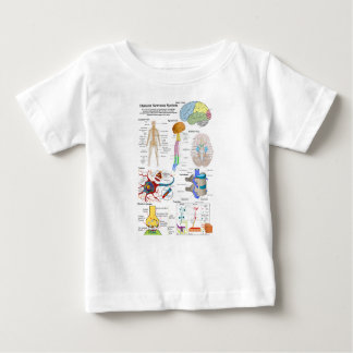 Human Brain and Central Nervous System Diagram Baby T-Shirt