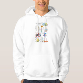 Human Brain and Central Nervous System Diagram Hoodie