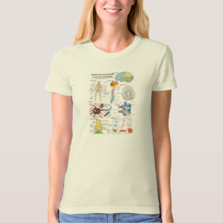 Human Brain and Central Nervous System Diagram Tee Shirt
