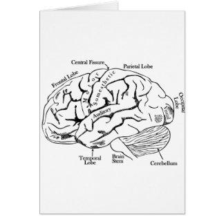 Human Brain Card