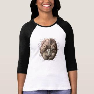Human Brain Diagram T-Shirt