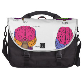 Human brain from all sides commuter bags