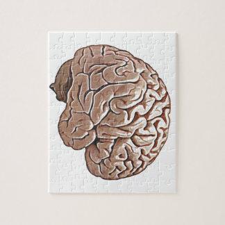 human brain jigsaw puzzles