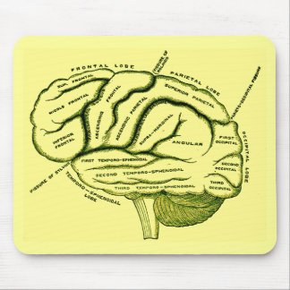 Human Brain Mouse Pad
