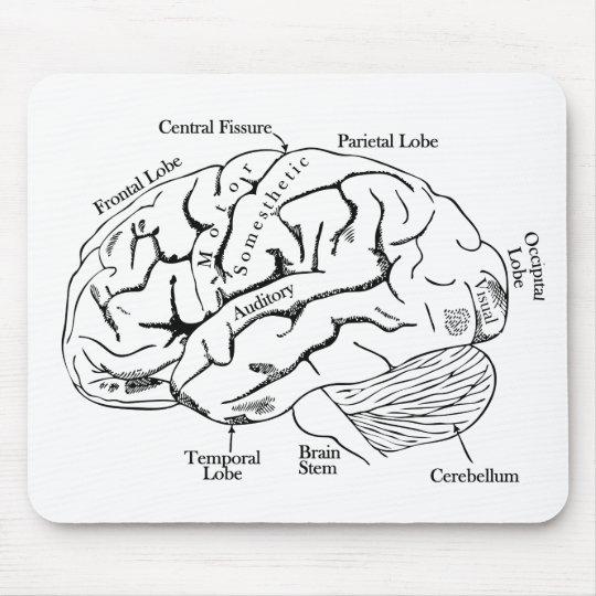 Human Brain Mouse Pad