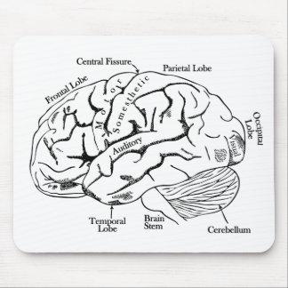 Human Brain Mousepads