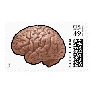 Human Brain Postage