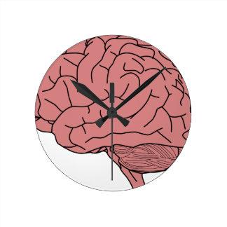 Human brain round clock